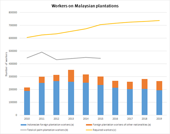 Workers on Malaysian plantations