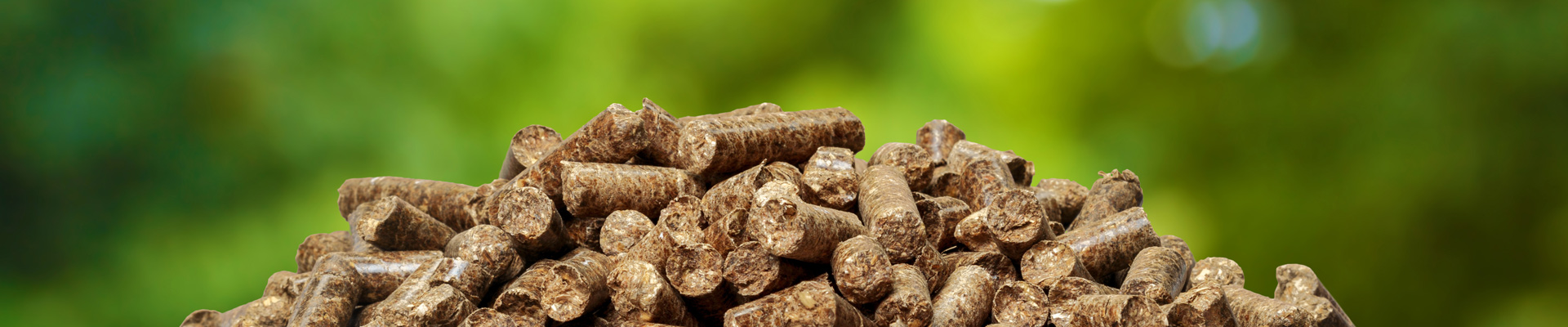 Biomass: ARGUS fob Baltic wood pellet spot index